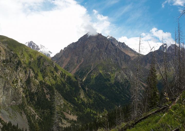 Левое Талгарское ущелье. фото 01