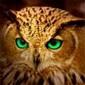 Pahenty аватар